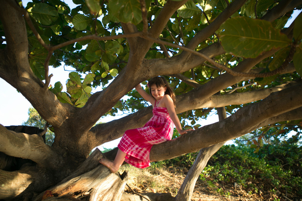 Maui family session, girl in the trees